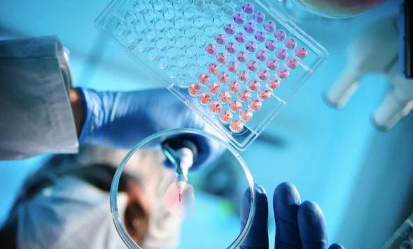 Гель «Фламена» – инструмент клеточной инженерии