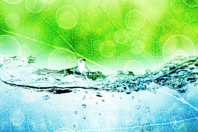 «Фотосинтез углерода» с помощью нанотехнологий для преобразования CO2 в топливо