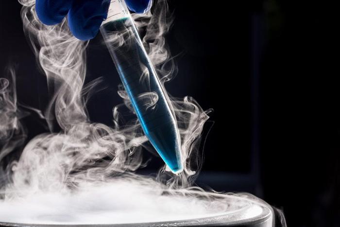Разработаны полимеры, защищающие криогенно-консервированные клетки от повреждения