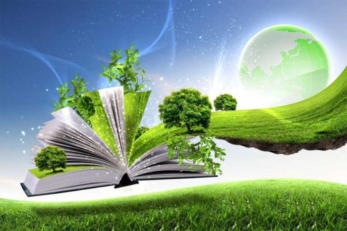 Экологическое проектирование: суть, задачи и этапы