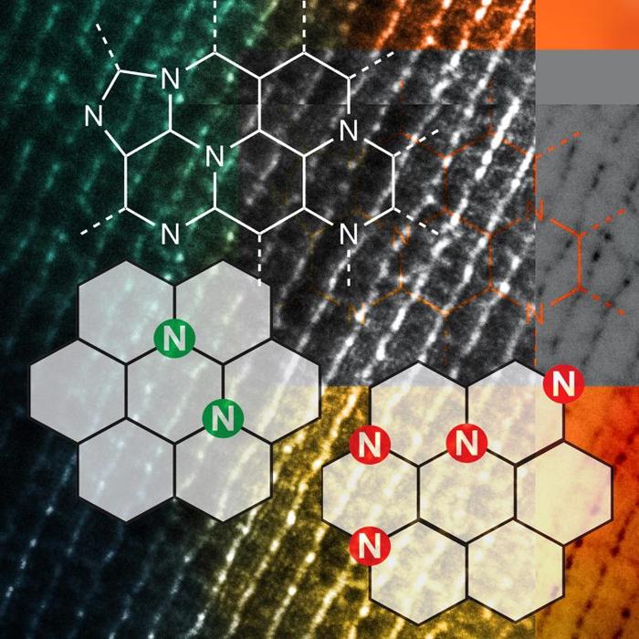 Открытие безметалловых катализаторов может революционизировать производство биотоплива
