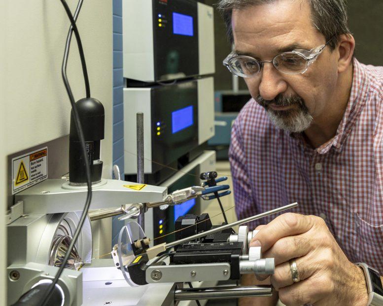 Бактерии, поглощающие серу, могут быть ключом к производству общих компонентов пластмасс