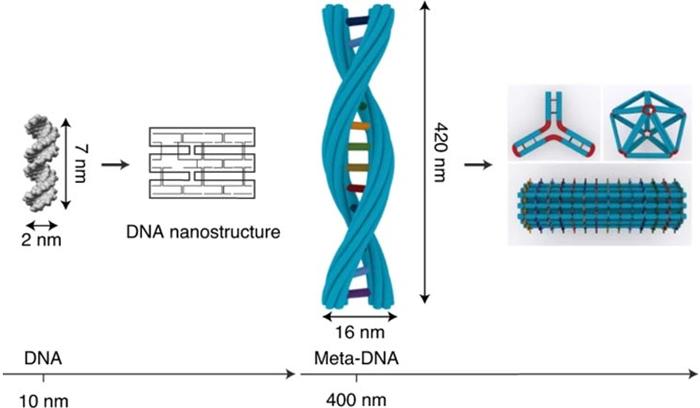 Структуры мета-ДНК трансформируют мир нанотехнологий ДНК