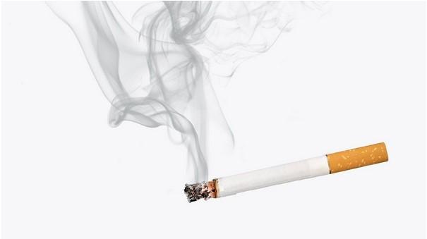Как и где лучше купить сигареты оптом в Украине?