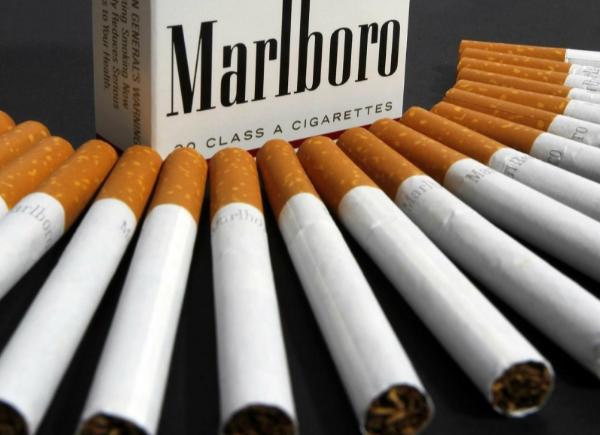 Как и где можно заказать сигареты оптом?
